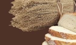 H-Icon_Ch24_Bread_icon